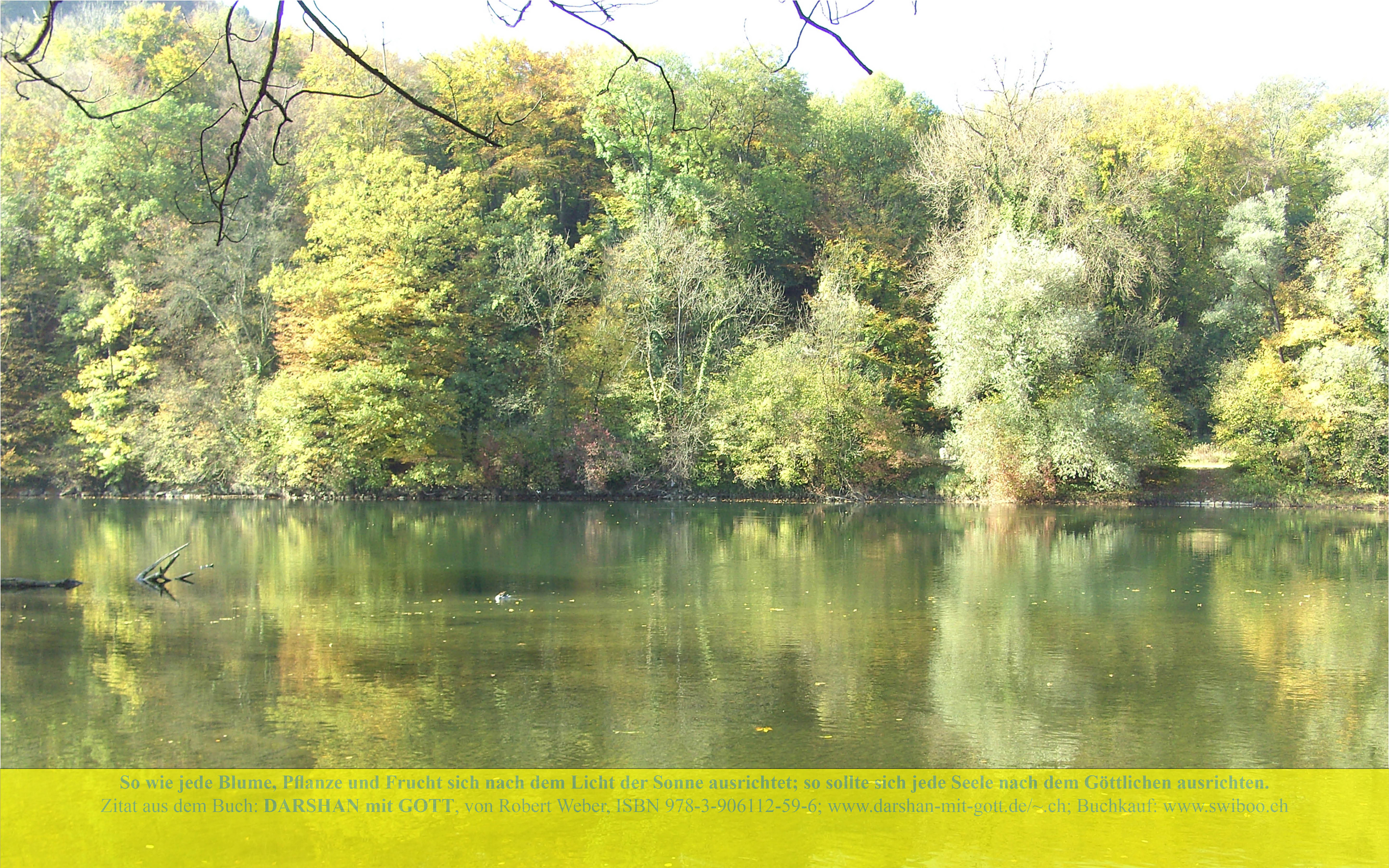 DARSHAN mit GOTT: So wie jede Blume, ..., Aare-Flusslandschaft