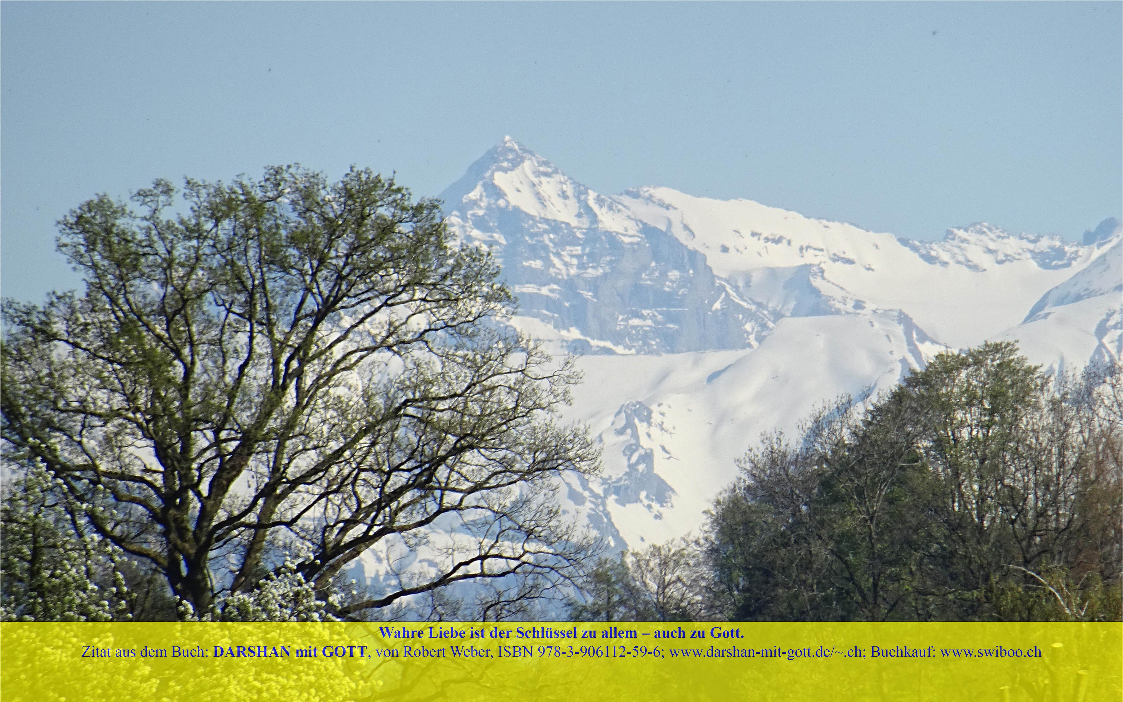 DARSHAN mit GOTT: Wahre Liebe ist ..., Schneeberge mit blühenden Bäumen, Sempach