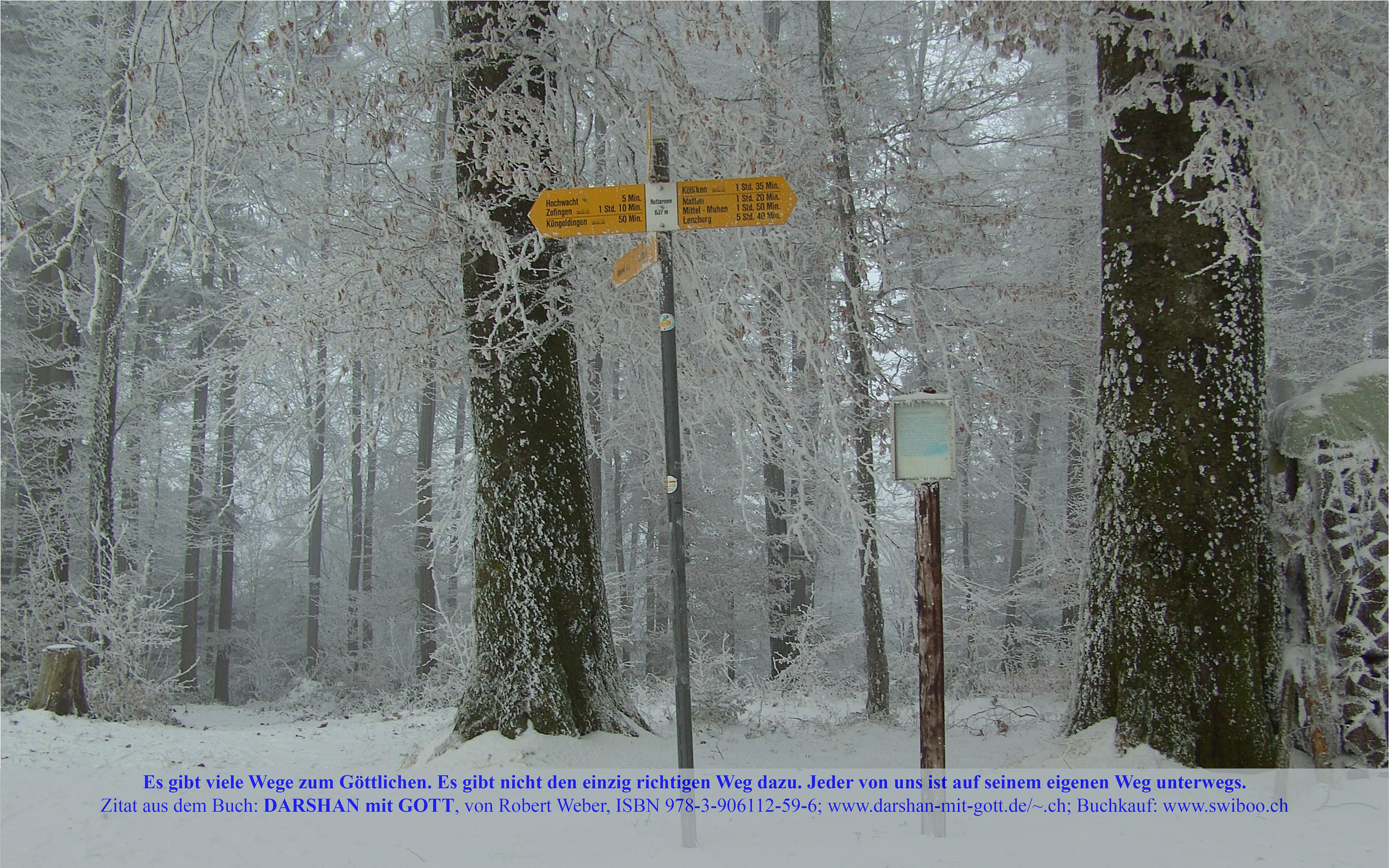 DARSHAN mit GOTT: Es gibt viele Wege zum Göttlichen. ..., Winterwald mit Wegweisern