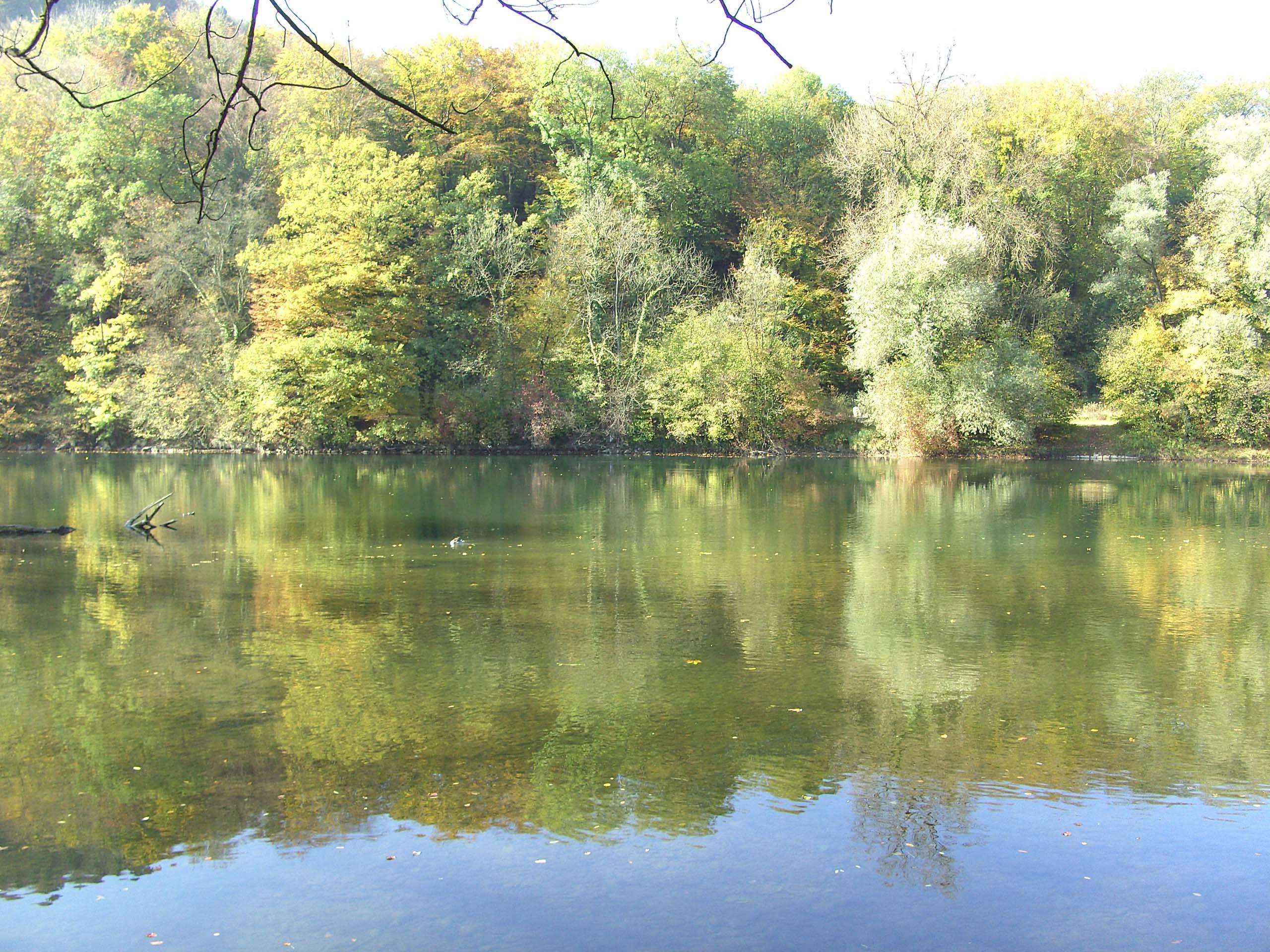 DARSHAN mit GOTT: Aare-Flusslandschaft bei Aarau, Desktopbild
