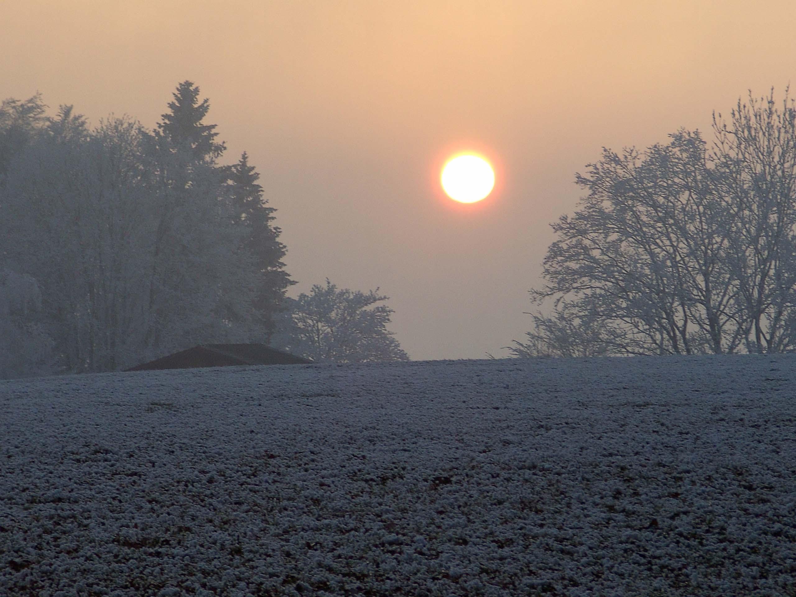 DARSHAN mit GOTT: Winterlandschaft mit Sonne und Nebel, Desktopbild